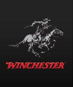 winchester logo card