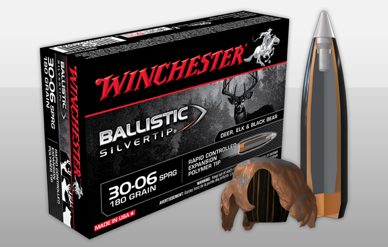 Ballistics silver tip