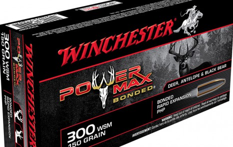 Power Max 300