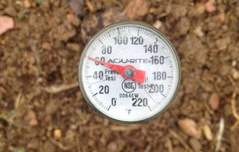 Soybeans and soil temperature winchester blog for Soil temperature