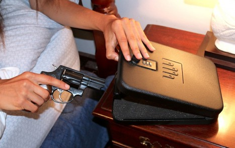 HandgunSafe_Web