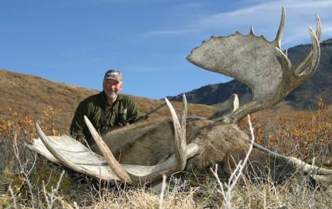 DYI_Alaska_moose-foulkrod_9-22-2011_3
