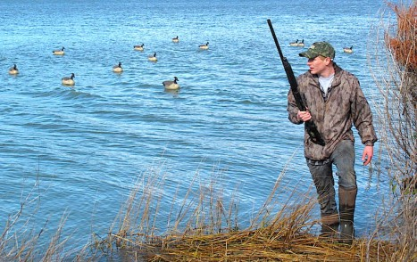 The Best Loads For Geese
