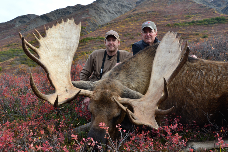 shows last alaskans videos pissed moose