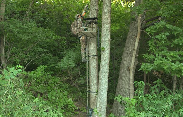 WS_Treestand_Climb