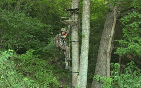 WS_Treestand_Climb_Halfway_Up
