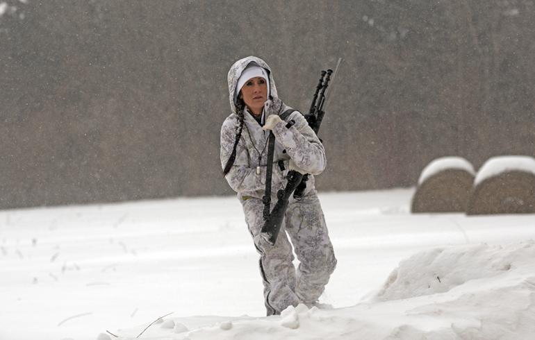 snow_predator_pic