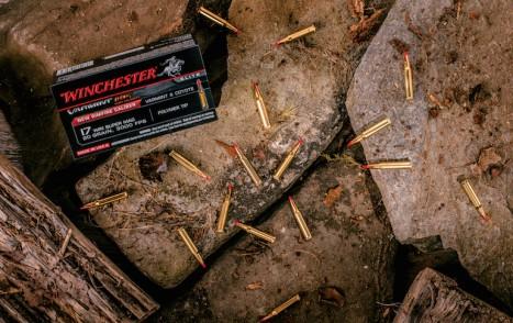 Ballistics-Rimfire_2