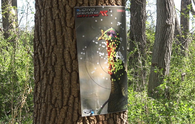 long_beard_target_30_yards