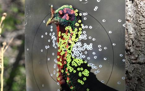 target_ts