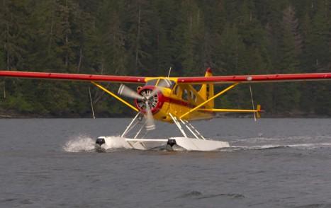 float_plane_alaska_bear_2016