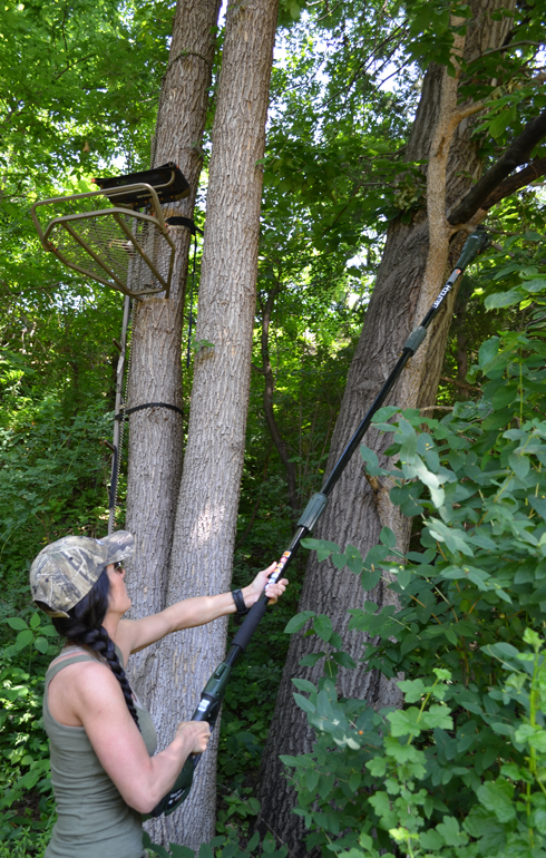 saw_with_treestand_vertical
