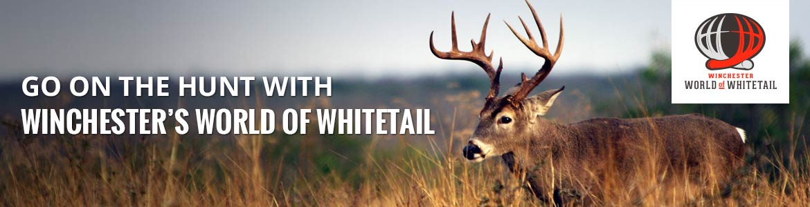 world of whitetail