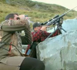 tahr hunting
