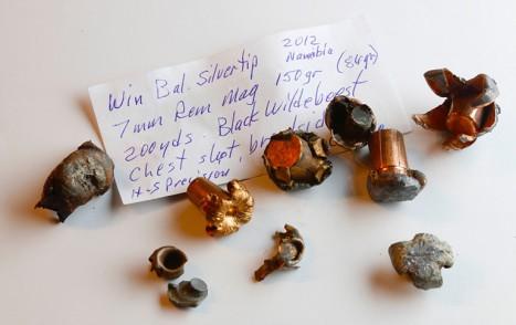 Spent_bullets