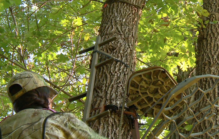 Simple Tree Stand Safety Tips Winchester Blog