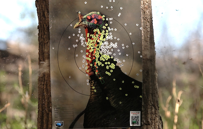 turkey_target_getting_hit
