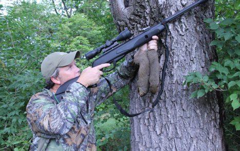 squirrelhunter