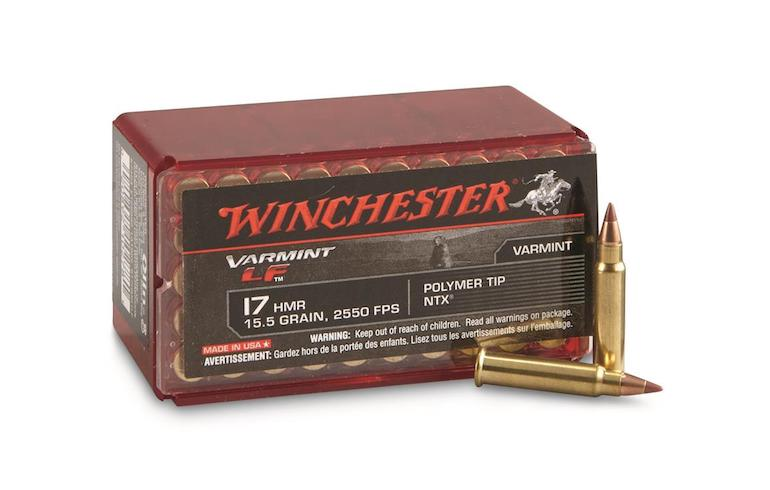 Beyond the 22LR for Small Game   Winchester Ammunition