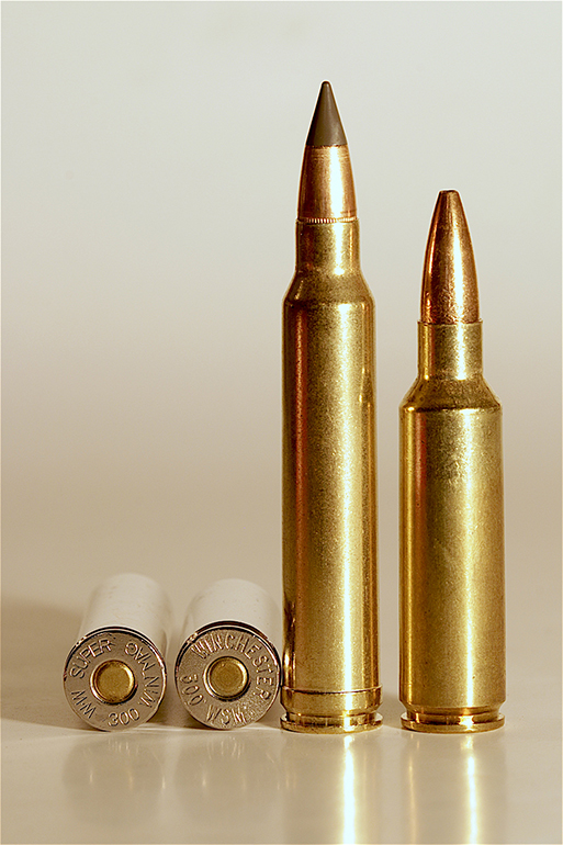 300 winchester magnum or the 300 winchester short magnum