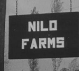NILO Farms